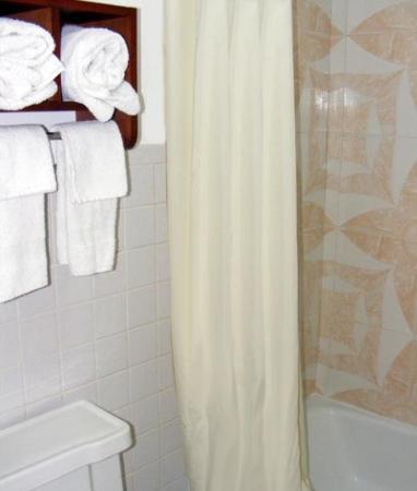 Budget Inn Palmyra: Bath