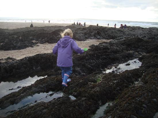 Stowford Farm Meadows: Rockpooling at Croyde Bay