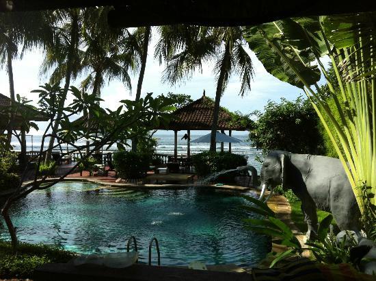 Pondok Bambu: Sightseeing from the room