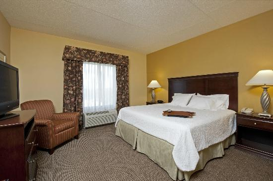 Hampton Inn Indianapolis Northwest - Park 100: Modern King Study