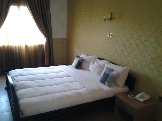 Savannah Suites Hotel : Guest Room