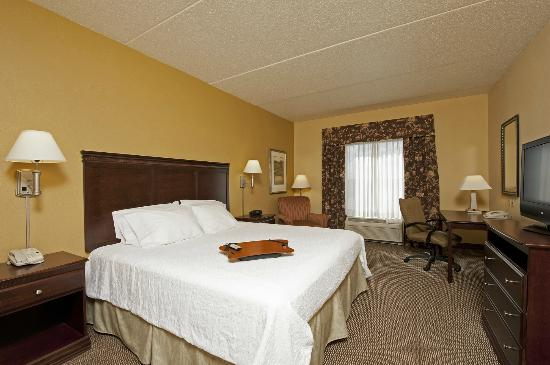 Hampton Inn Indianapolis Northwest - Park 100: Modern King Guest Room
