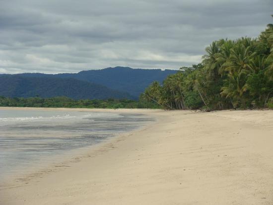 Newell Beach Caravan Park : Newell beach