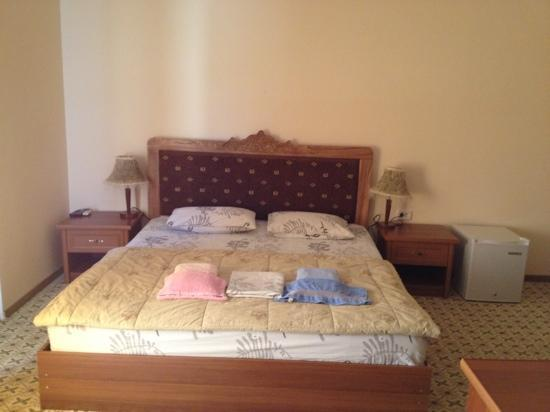 Fatima & Ibragim Hotel: room