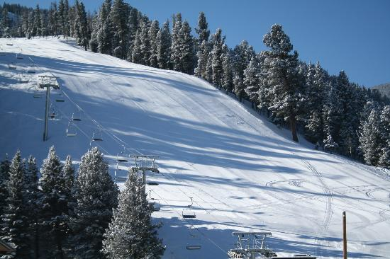 Wild Bill's Lodging: View of the FACE of Red River Ski Area