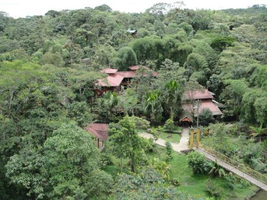 Hosteria Flor de Canela: Hard to believe you're 3 mins from civilization