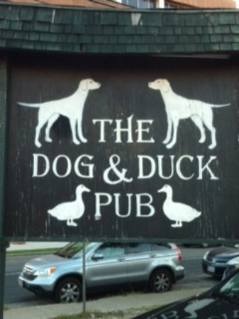 The Dog & Duck Pub: Outdoor sign
