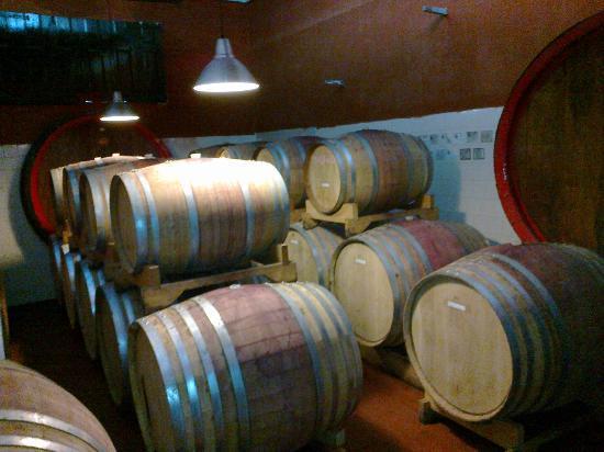 PinBologna Residence: Der Weinkeller