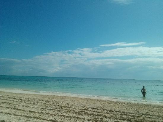 Ocean Coral & Turquesa: Playa