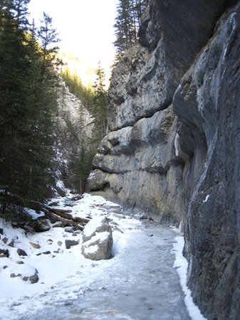 Grotto Canyon: Creek
