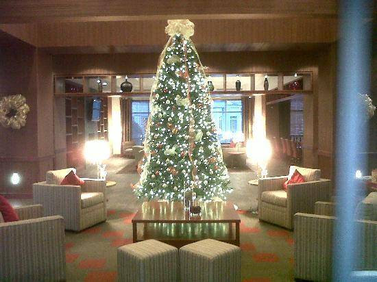DoubleTree by Hilton Raleigh - Cary: The Christmas tree in reception