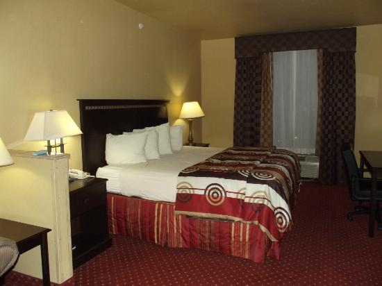 Quality Inn and Suites: King Suite