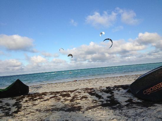 Sol Cayo Guillermo: Had to be up to 100 kites, 30 hear and 70 at resort downwind