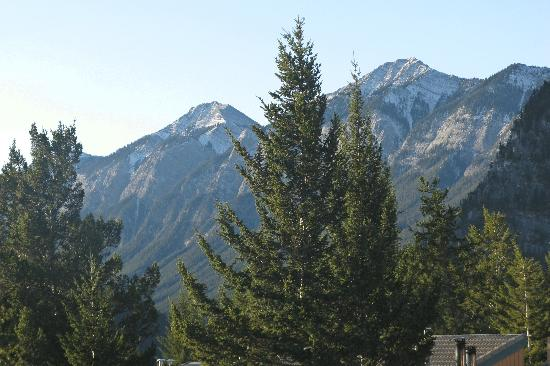 Douglas Fir Resort & Chalets: View from our Room
