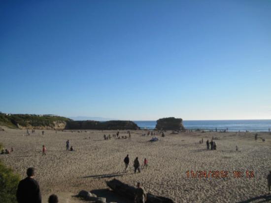 Santa Cruz Main Beach: beach