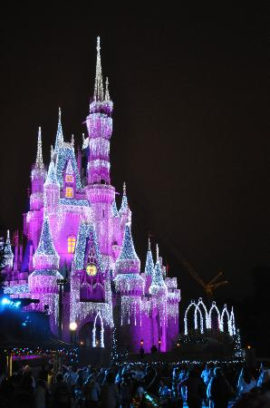 The christmas Lights - Picture of Magic Kingdom Park, Orlando ...