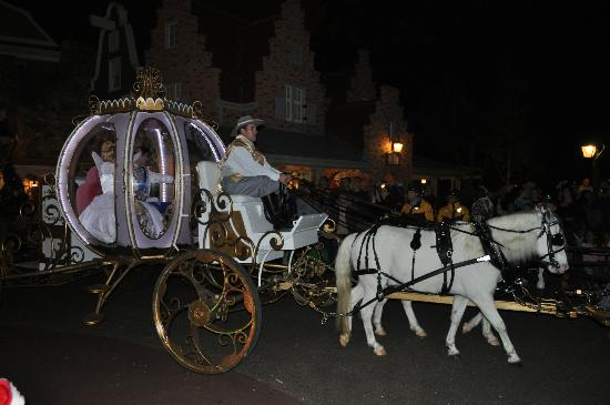 Cinderella's Carriage pulled by 6 white horses. - Picture of Magic ...