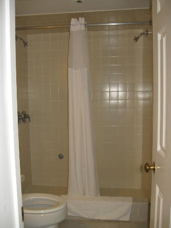 Wyndham Newport Onshore: Large shower with 2 showerheads but no place for soap,shampoo or washcloth