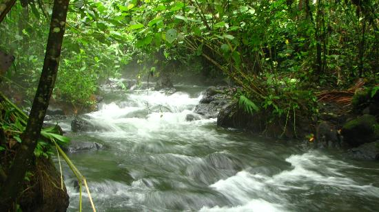 La Fortuna de San Carlos, Costa Rica: Free Hot springs
