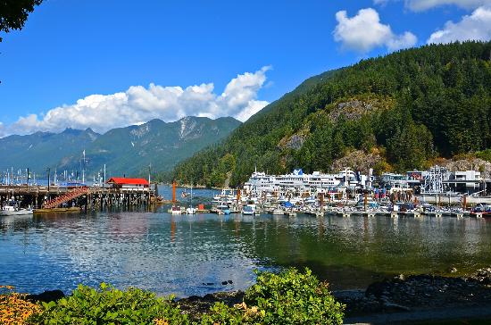 Horseshoe Bay Motel: Ferry in Port