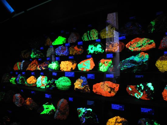 Fluorescent Rocks Picture Of Sterling Hill Mining Museum