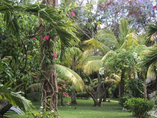 Coin de Mire Attitude: hotel garden