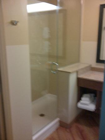 La Quinta Inn & Suites Chicago Downtown: Bathroom