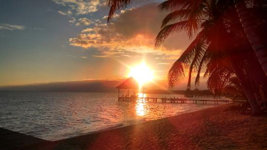 Parrot Cove Lodge: beautiful sunrise