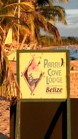 Parrot Cove Lodge: nice beach