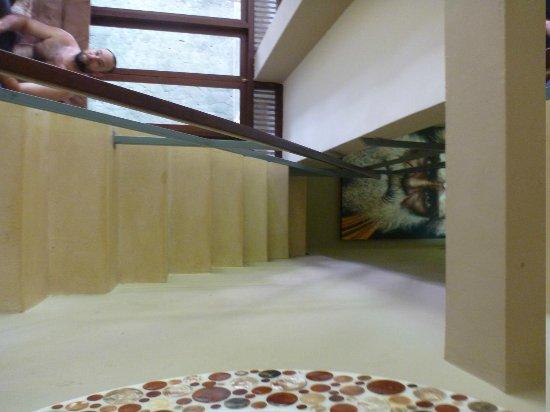 Villa Areklo: Stairs to bathroom