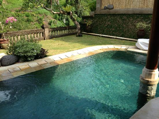 Viceroy Bali: pool in the villa