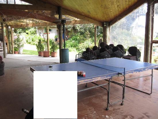 Bethells Beach Cottages: Table Tennis in common area
