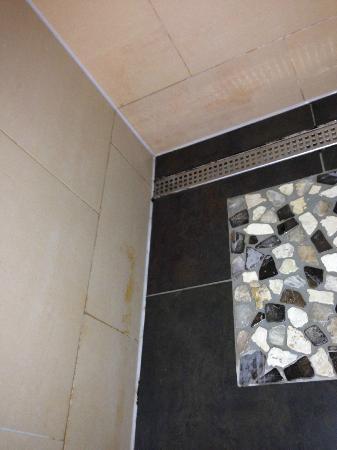 Vieze tegels en schimmel badkamer - Picture of Center Parcs - De ...