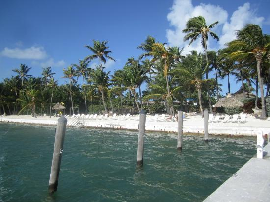 Amara Cay Resort: The beach area