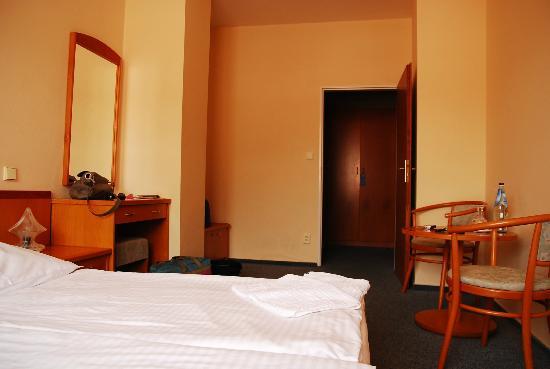 Hotel Dalimil : room