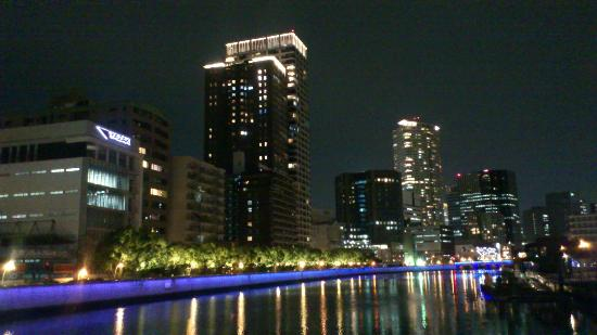 RIHGA Royal Hotel Osaka: リバーサイド