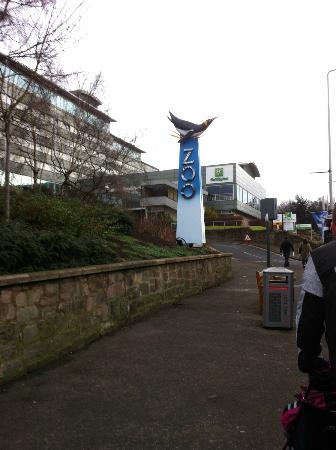 Holiday Inn Edinburgh: Hotellet ligger granne med Edinburgh Zoo