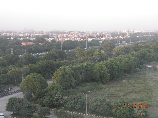 Crowne Plaza Hotel Gurgaon: Green Belt seen from room