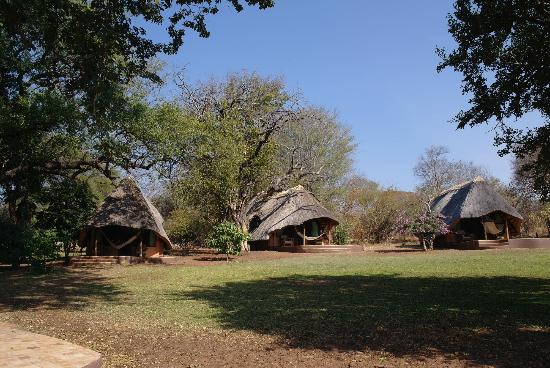Imbabala Zambezi Safari Lodge: Lodges