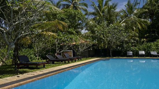 Shangri-Lanka Villa: Pool