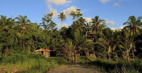 写真Shangri-Lanka Villa枚