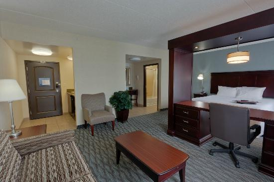 Hampton Inn & Suites Syracuse Erie Blvd/I-690: King Studio Suite