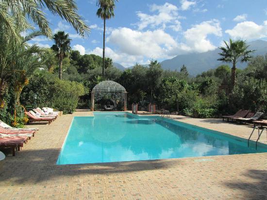 Domaine de la Roseraie : Swimming pool