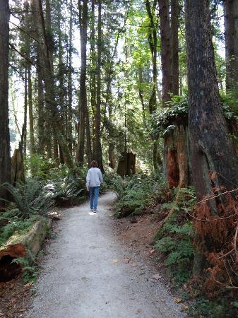 House On Dunbar B&B: Pacific Spirit Regional Park