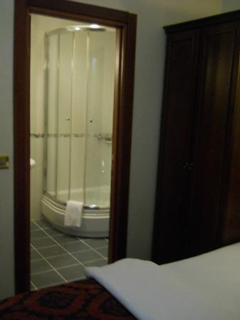 Amber Hotel: Small bath in room 203