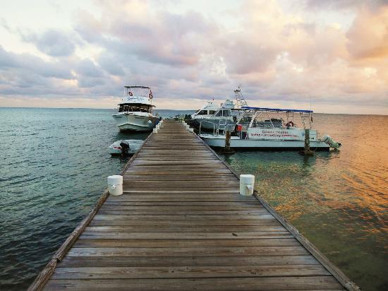 Compass Point Dive Resort : Dock, dive boats
