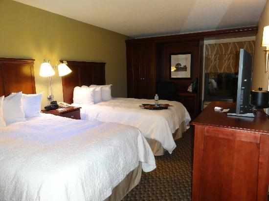 Hampton Inn Detroit Northville: Very clean room