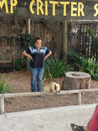 Billie Swamp Safari: Show mit exotischen Tieren Floridas