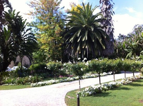 Woodall Country House and Spa: mit Rosenbäumen gesäumter Zufahrtsweg