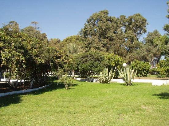 the garden of the hotel les hamadites